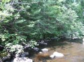 Vacant Forest Rd, Indian Lake, NY 12842 - Image 1: Main View