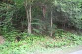 000 Petrie Road, Old Forge, NY 13420 - Image 1: Main View