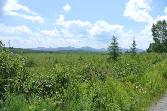 Lot # 31 Oseetah Park Road, Saranac Lake, NY 12983 - Image 1: Main View