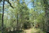 70.96 Chamberlain Ferry Road, LINCOLNTON, GA 30817 - Image 1: Main View