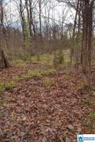 1237 SHORTOWN BRANCH RD Lot 1 Property Photo