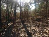 80 Acres GARDNER RD Lot 1, DADEVILLE, AL 36853 - Image 1
