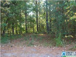 67 MOHAWK TRL Lot 9 & 10, PELL CITY, AL 35128 Property Photos