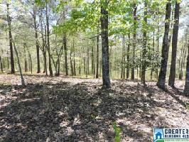 12 SWEETWATER DR Lot 12, LINEVILLE, AL 36266 Property Photo