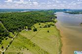 6463 GREEN RD, SOUTHSIDE, AL 35907 - Image 1: On Lake Neely Henry