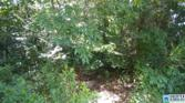 One acre lot BUCKHAVEN DR Lot One acre lot, SOUTHSIDE, AL 35907 - Image 1