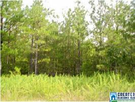 34 WOODLAND DR, SHELBY, AL 35143 Property Photo