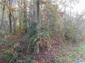 LAKESHORE CIR Lot 1/2 is Lot 6 and 1 Lot is, ONEONTA, AL 35121 - Image 1