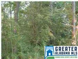 0 LAKESIDE LN Lot 00 Property Photo