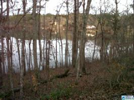 00 ALPINE CIR Lot 23, MCCALLA, AL 35111 Property Photo