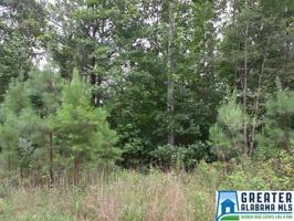 CO RD 807 Lot 10 acres Property Photo