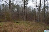 100 PINE VIEW RD Lot 27, ONEONTA, AL 35121 - Image 1