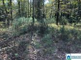 334 WARRIOR RIVER HIGHLANDS RD Lot 1.6 Arces, ADGER, AL 35006 - Image 1