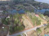 0 SAGE BRUSH Lot 13, ASHVILLE, AL 35953 - Image 1