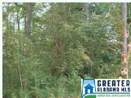 0 HWY 191 Lot 35 Property Photo