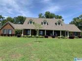 545 GUY LEE LAKE RD, RAINBOW CITY, AL 35906 - Image 1