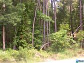 MOUNTAIN WOODS LAKE RD Lot 16 ACRES, HAYDEN, AL 35180 - Image 1