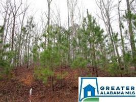 7996 FOREST LOOP Lot 1 Property Photo