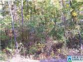 HILDA DR Lot 20, LAKEVIEW, AL 35111 - Image 1