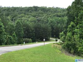 18 WHITE TAIL RUN Lot 609 Property Photo