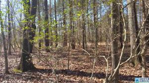 Lot 10 MORNING GLORY CIR, TALLADEGA, AL 35160 Property Photo