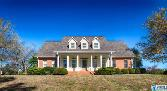 395 CO RD 1317, VINEMONT, AL 35179 - Image 1