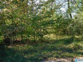 903 PEOPLES LN Lot 19 Property Photo