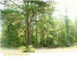 150 HIGHLAND VIEW DR Lot 96, RIVERSIDE, AL 35135 Property Photos