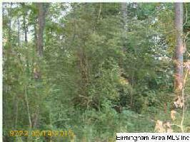 515 CREEK RIDGE DR Lot 75, RIVERSIDE, AL 35135 Property Photo