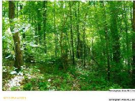 651 LAKEVIEW CREST DR Lot 73, PELL CITY, AL 35128 Property Photo