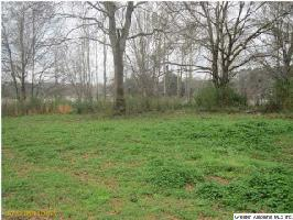 0 HWY 416LOT 25, WILSONVILLE, AL 35186 Property Photos