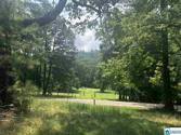 8346 CEDAR MOUNTAIN ROAD Lot 5 & 6, PINSON, AL 35126 - Image 1