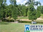 5807 STEMLEY RD, TALLADEGA, AL 35160 - Image 1: Acreage on Logan Martin, waterfront