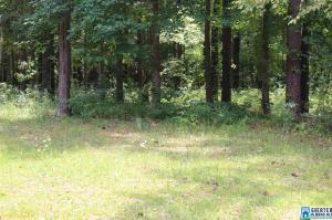 00 COVE RD Lot 9 Property Photo