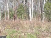 MATTOX AVE., COLONIAL BEACH, VA 22443 - Image 1: : MATTOX AVE. LOT