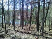 32 Manso, Hot Springs Village, AR 71909 - Image 1