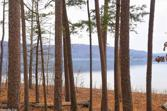 17 acres Stone Drive, Greers Ferry, AR 72067 - Image 1