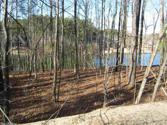46 PANORAMA  DRIVE, Hot Springs Village, AR 71909 - Image 1