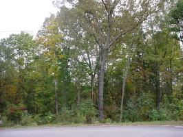 Lot 57 597 Evergreen Road , Lake Wylie, SC 29710 Property Photo
