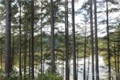 2038 Inlet Shore NE, Connelly Springs, NC 28612 - Image 1