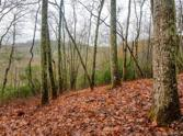 2297 Lake Forest Drive Lot 84, Tuckasegee, NC 28783 - Image 1
