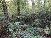 85 Denman Drive, Lake Junaluska, NC 28745 - Image 1: Gentle sloping land. Home plan reflects this. And yes! There is a sunset and long range mountain view from this lot! Just need to clear a few trees!
