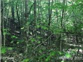 LOT 57 Clear Spring Lot 57, Nebo, NC 28761 - Image 1