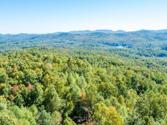 000 Mountain View Church Road, Zirconia, NC 28790 - Image 1