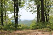 000000 Mcalpine Mountain Road, Zirconia, NC 28790 - Image 1