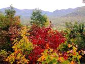 00 High Rock Ridge Lot 7, Lake Lure, NC 28746 - Image 1