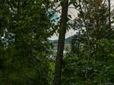 LOT 25 Hawks Nest Trail, Lake Lure, NC 28746 - Image 1
