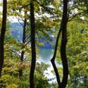 Lot 4 Sugarbush Point, Lake Lure, NC 28746 - Image 1