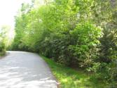 TBD Upper Whitewater Road, Sapphire, NC 28774 - Image 1