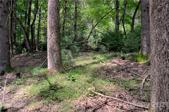 Lot #12A Lurewoods Manor Lot Lot 12A, Lake Lure, NC 28746 - Image 1